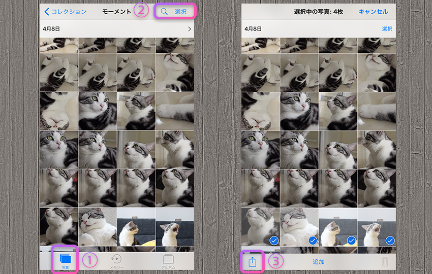 iPhone写真ライブラリー